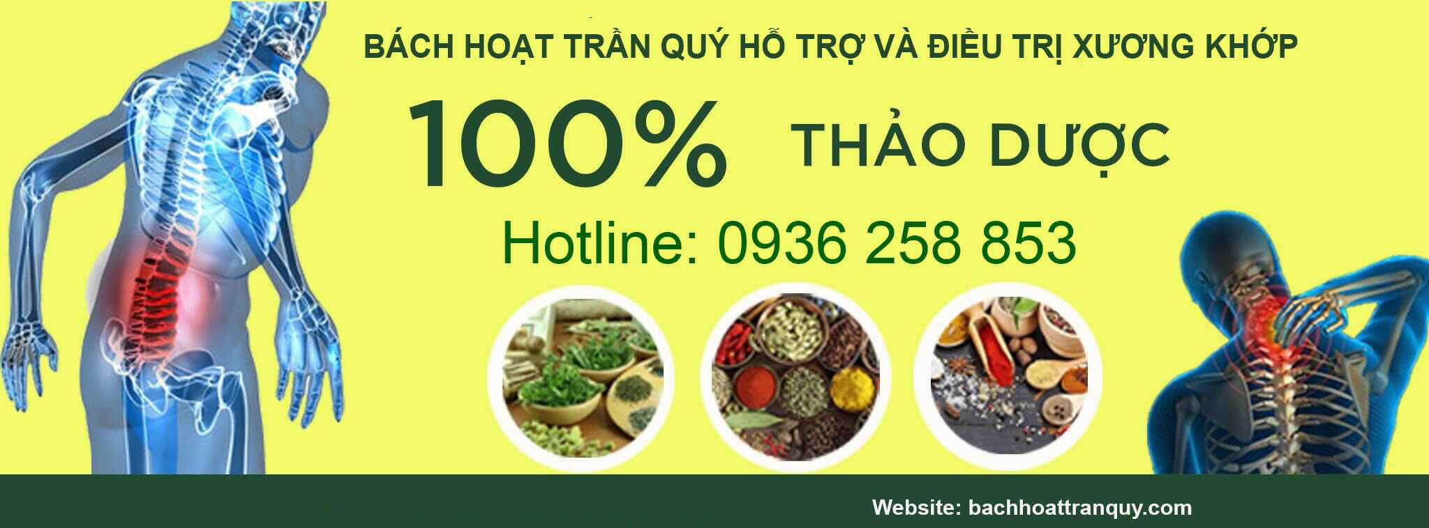 thao compressed